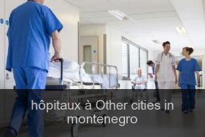 Hôpitaux à Other cities in montenegro
